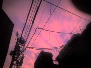 2006_0808_015.jpg